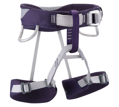 Wiz Kid Harness